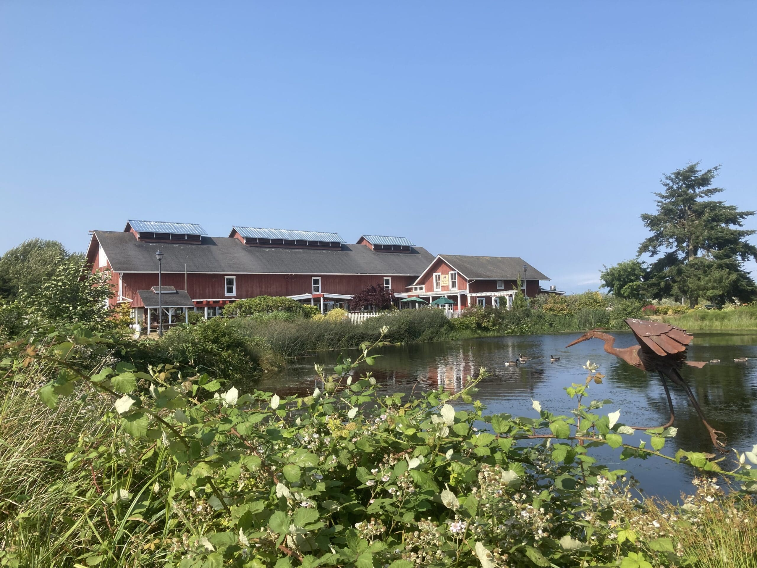 red barn with pond in front