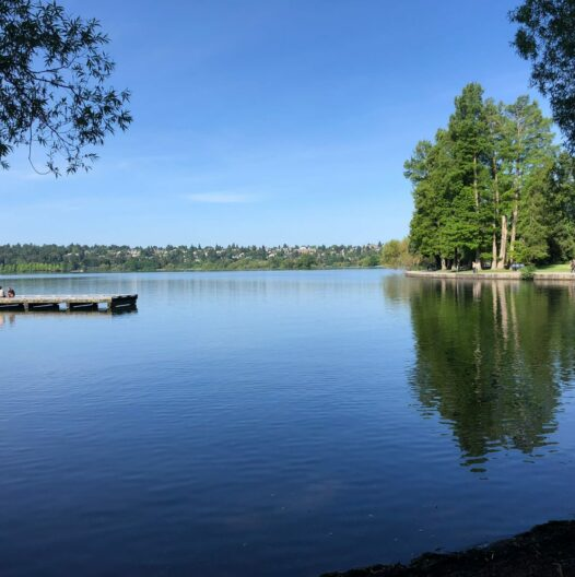 Green lake with still water on a clear and sunny day
