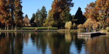 Green lake in all its autumn glory