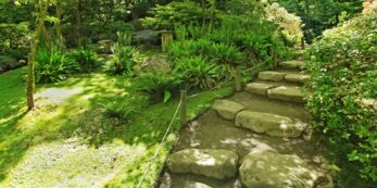 A stairway at the Japanese gardens in Seattle looks moss filled and very green