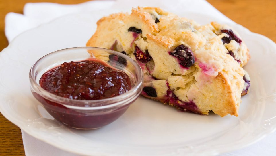 A fresh scone sits on a plate with jam next to it