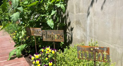 The garden at Greelake Guest House has some variety of herbs and is very cute